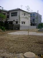 20060620